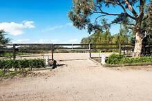 Brimham Park Horse Agistment Hurstbridge Nillumbik Area Preview