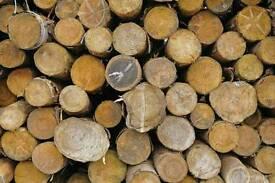 Logs for sale FREE DELIVERY apple & pear logs seasoned