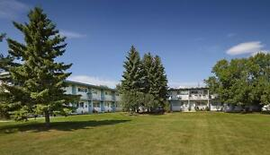 FREE RENT | Beautiful 4 Bedroom Townhome | Wellington Park Edmonton Edmonton Area image 1