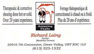 FARRIER SERVICES Being Offered Cornwall Ontario image 1