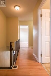 Affordable Price in a Prime Location! St. John's Newfoundland image 6