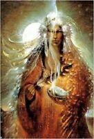 The Way of the Shaman: Basic Workshop - Spiritual Awakening