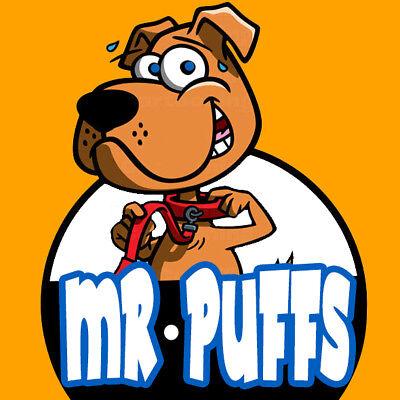 Cartoon Logo Design   Mascot Logo Design   Unlimited Revisions   Source File