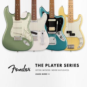 Fender Player Series at www.ardensmusic.com