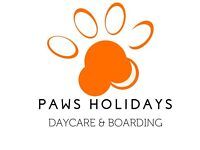 Doggie Day Carer & Canine Holiday Hosts Wanted