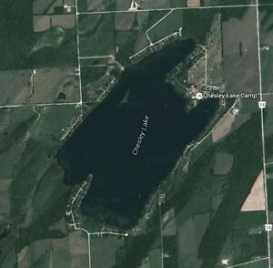 Chesley Lake house or cottage Wanted