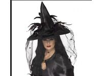 Adults witch hat - Halloween