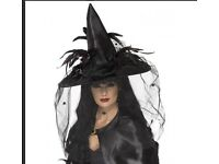 Adult witch hat for Halloween