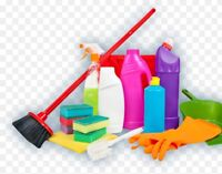 Professional Cleaning (Edmonton and surrounding areas)