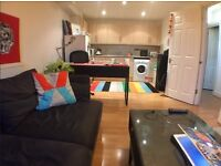 REDUCED! GORGEOUS, BRIGHT AND SPACIOUS 1 BED FLAT IN STOKE NEWINGTON! RECENTLY RENOVATED