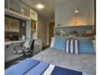 STUDENT ROOMS TO RENT IN SHEFFIELD. ENSUITE WITH KITCHEN,GYM,GAMES ROOM,LIVING ROOM