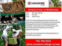 Canadore College - Parry Sound - Beekeeping
