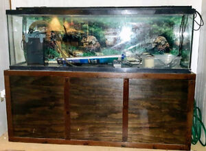 125 Gallon tank complete with stand