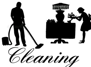 Professional European Cleaning