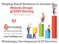 Web Design $299- No hidden charges