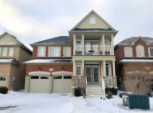 Detached House For Rent - Aurora & Newmarket