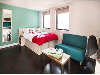 Twerton Mill Student Accommodation to rent (studio)