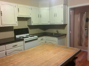 2 BEDROOM BASEMENT SUITE WITH OWN ENTRANCE IN SW CALGARY
