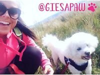Gies A Paw - Dog Walking, Dog Walker, Home Boarding and Pet Sitter