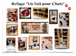 (441-3)  ADOPTION CHATS / CHATONS .. LAVAL