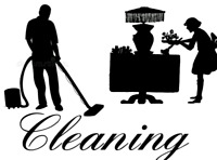 Professional European Cleaners