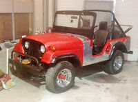 Cool Little Willys Jeep M38A1