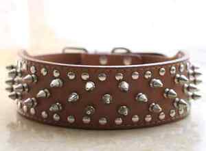 Pu Leather studded dog collar