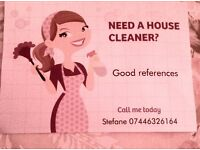 Domestic Cleaning responsibly