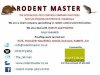 poison free pest control ,,, rats mice squirrels, Glis-Glis, wasps, bedbugs, cockroaches, fleas ect