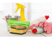 Cleaner ad hoc