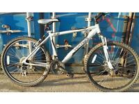 Vertigo adults mountain bike