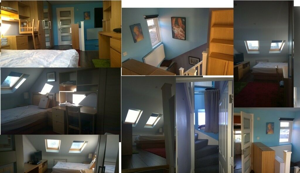 Ensuite Sunny 2mins tube huge loft room. Professional, quiet, clean house-share.