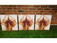 Canvas rose prints in cepia X 3 - £15