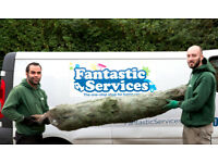 Real Christmas Trees In London | Delivery, Installation, Decoration, Disposal