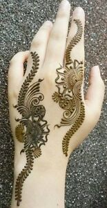 Book your in-home Henna Party, private appointment...or drop-in Windsor Region Ontario image 4