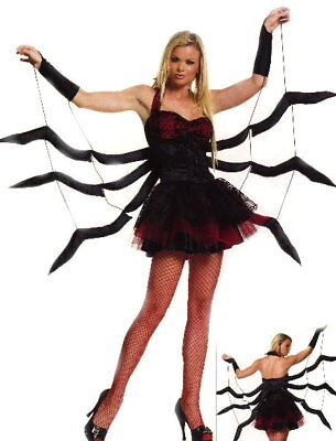 Spider Woman Black Widow Sexy Halloween Party Costume Sz S/M](Spider Woman Halloween Costume)