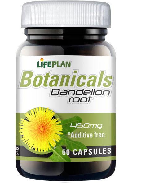 Lifeplan Dandelion Root 450mg (60 Vegicaps)
