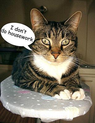 Tabby Cat Fridge Magnet, Don't Do Housework!