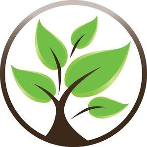 Mineo Landscapes & Garden Maintenance Bundoora Banyule Area Preview