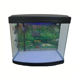 Aquarium tank in new south wales gumtree australia free for Fish tank with built in filter