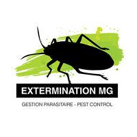EXTERMINATION MG-ÉLIMINEZ VOS FOURMIS À PARTIR DE 100$