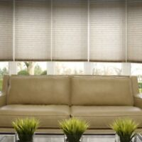 Window blinds & tinting