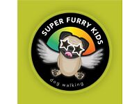 Super Furry Kids Dog Walker Chorlton. Caring & trustworthy, for fun filled walks or overnight stays.