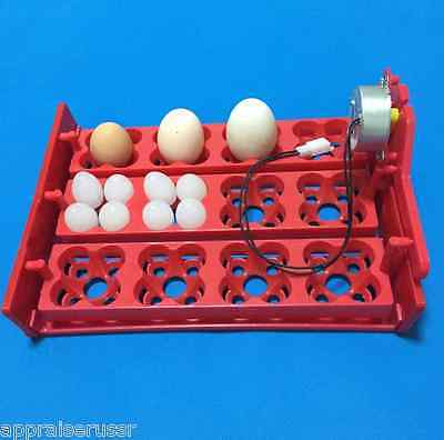 Automatic 12 48 Quail Egg Turner Tray With Motor 110volt Or 220volt