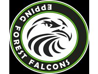 U16 Footballers: Play at a Development Club - EPPING FOREST FALCONS FC U16 – Loughton, Essex