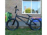 Custom DK BMX