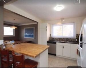 Summer Sublet FEMALE ONLY