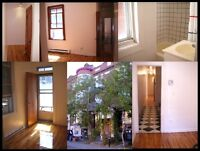 3½ Apt. 795$/ mois, Mile-End-Outremont, Montreal