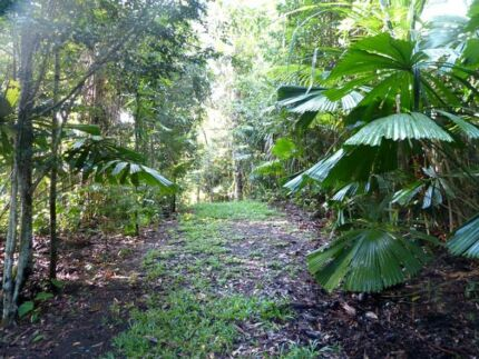Kuranda rainforest homesite on acreage for sale Kuranda Tablelands Preview