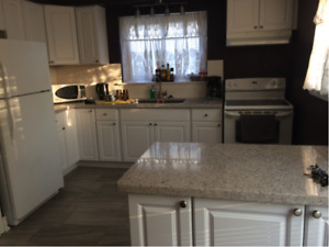 Rooms Available in Beautifully Renovated Student Rental Home